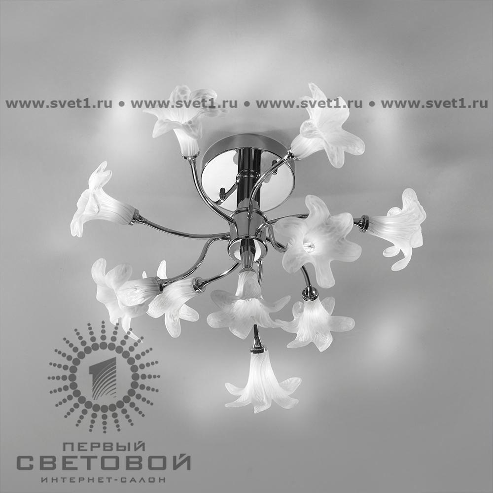 Cremasco Primavera 2016